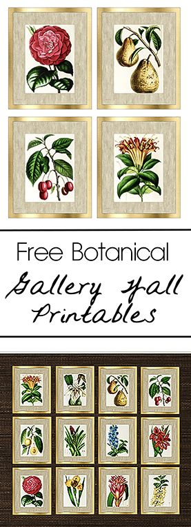 Free Botanical Gallery Wall Printables